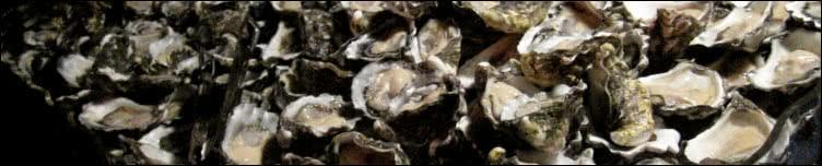 15 Dozen Oyster Challenge